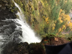 View from the tippy top of Multnomah